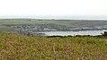 Penrhos Feilw, Holy Island (507287) (33098788546).jpg