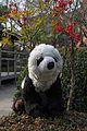 Petit panda au jardin (6970235951).jpg