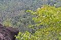 Phantom rock, Wayanad Hill Station - panoramio (1).jpg