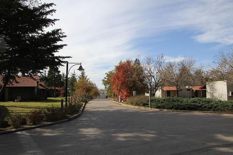 קיבוץ מרום גולן בסתיו