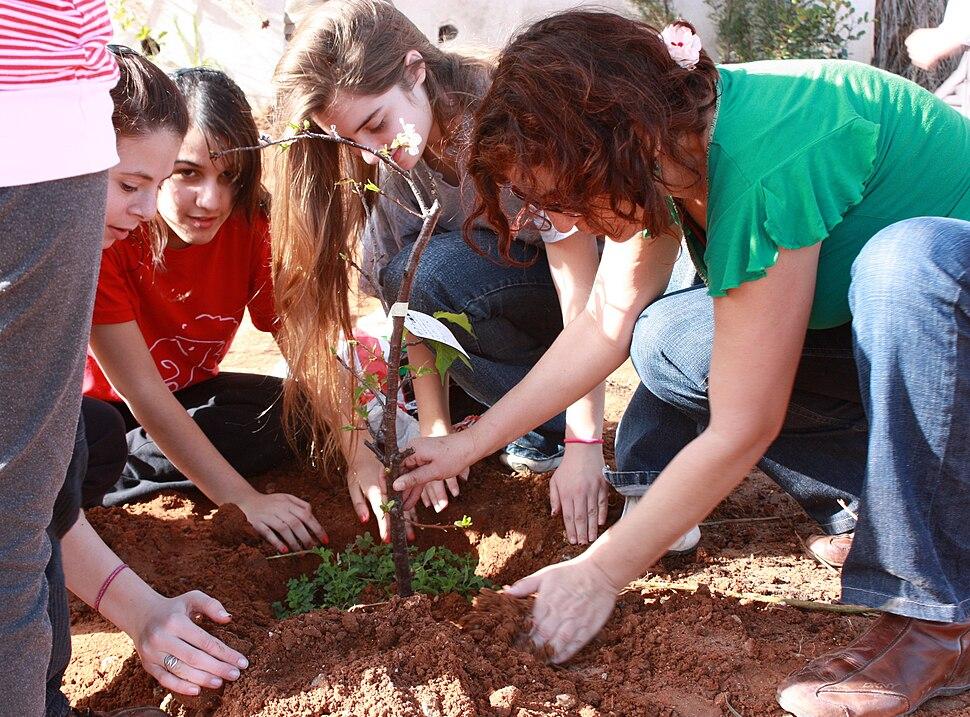 PikiWiki Israel 7673 Environment of Israel