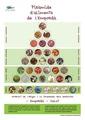 Piràmide d'aliments de l'Empordà Solució DINA3.pdf