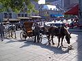 Place Jacques-Cartier 068.JPG