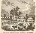 Plain of Chalmette 1876.jpg