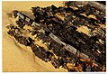 Planet Fortaleza de Sagres Portugals Thunder Sea Lords EARTH - Master Earth Photography - panoramio.jpg