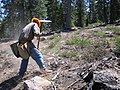 Planter working on the Tahoe NF (3821494544).jpg