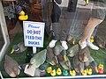 Plastic ducks, High Street, Worcester, England - DSCF0701.JPG
