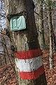 Poertschach Glorietteweg Wegmarkierungen 01032016 0698.jpg
