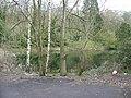 Pond between the Scizdons, Godalming - geograph.org.uk - 780316.jpg