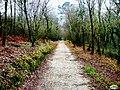 Pontevedra, Paseo do Lérez 04.jpg