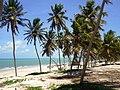 Praia de Zumbi 001.jpg