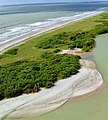 Praia do miriri rio tinto Paraiba.jpg