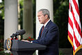 President Bush remarks over Georgia 2.jpg