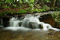 Pretty-waterfall-2 - West Virginia - ForestWander.jpg