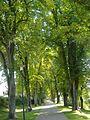 Promenade Donauwörth.jpg