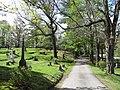 Prospect Hill Cemetery, Millis MA.jpg