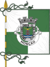 Flag of Monção