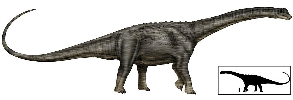 Puertasaurus copia