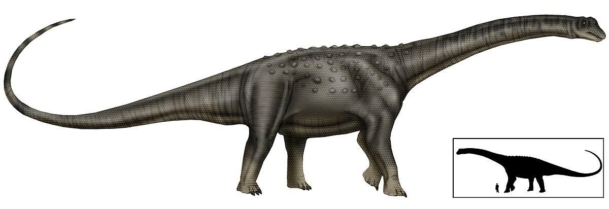 Resultado de imagen para puertasaurus