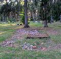Puski kalmistu.JPG