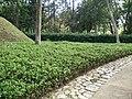 Putrajaya's Botanical Garden 31.jpg