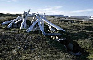 Qarmaq - Qarmaq (whale bone roof reconstructed) near Resolute, Nunavut.