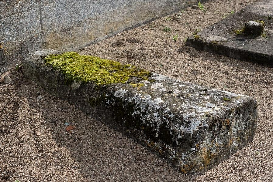 Sarcophages de Quarré-les-Tombes, Département Yonne, Bourgogne-Franche-Comté, France
