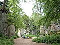 Quarry Gardens at Belsay House - geograph.org.uk - 25184.jpg