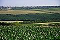 R23, Moldova - panoramio (17).jpg