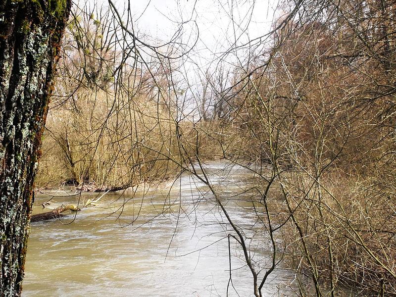 RNR basse vallée de la Savoureuse: Abords de la Savoureuse