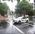 Rain in Sydney (3).jpg