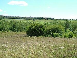 Durham Wildlife Trust - Rainton Meadows Nature Reserve, looking towards the village of East Rainton.