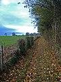 Raywell bridleway - geograph.org.uk - 609476.jpg