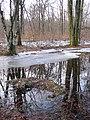 Reflets - panoramio (1).jpg