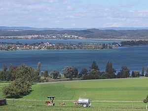 Untersee (Lake Constance) -  The island of Reichenau, as seen from the Seerücken