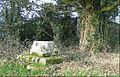 Remains of preaching cross at Trellech Cross - cropped.jpg