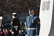 Remembrance Day National War Memorial Ottawa 2010
