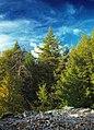 Riansares Mountain (Revisited) (3) (10031538776).jpg