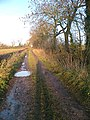 Ridge Lane. - geograph.org.uk - 292390.jpg