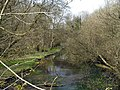River Dever, west of A34 - geograph.org.uk - 155247.jpg