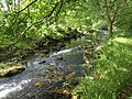River Erme near Harford - geograph.org.uk - 1356073.jpg