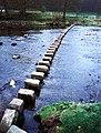 River Hodder at Whitewell - geograph.org.uk - 4975.jpg