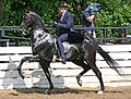 Rock Creek Spring Horse Show 2008 (2674578216).jpg