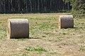 Rolo de herba - Rollo de hierba - Round hay bale - 03.jpg
