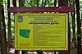 Romashkivka Kivertsivskyi Volynska-Moshchanytska dacha protected tract-information table.jpg
