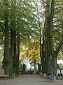 Rooms-Katholieke begraafplaats Oudewater 10.JPG