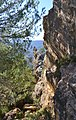 Roques a la muntanya del castell de Benifallim.jpg