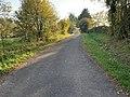 Route Coudes - Saint-Cyr-sur-Menthon (FR01) - 2020-10-31 - 1.jpg