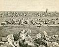 Rovine di Selinunte Minerva e Tempio di Apollo.jpg