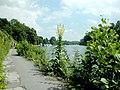 Ruhr-Leinpfad.JPG